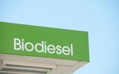 biodiesel manufacturers in india