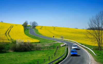 biodiesel company in india